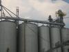 Winnsboro Grain Elevator