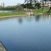 Witton Lakes