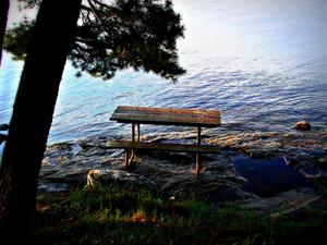 Woodenfrog Campground