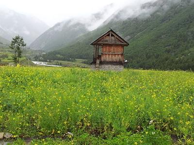 Wooden Hut In Chitkul
