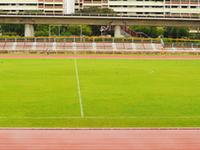 Estadio Woodlands