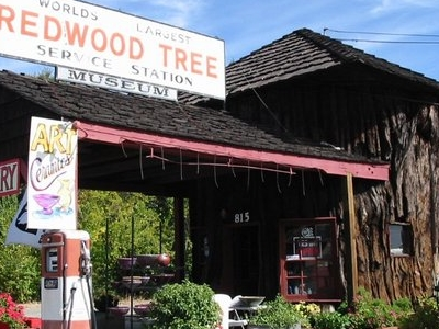 Worlds Largest Redwood Tree Service Station