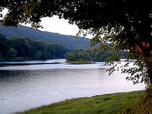 Worthington Forestal del Estado