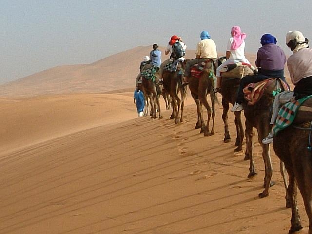 Desert Tour Fes to Marrakech Photos