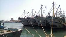 Wuci Fishery Harbor - View