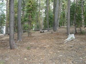 Plumas Wyandotte Campground
