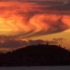 Waitemata Harbour Sunset
