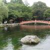 Wakutama Springs