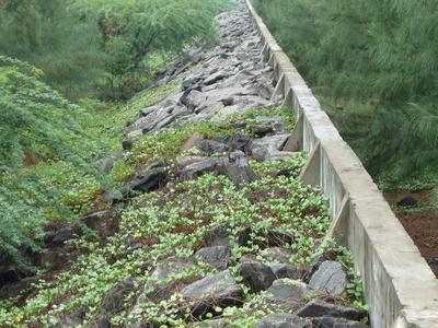 Wall In Kalpakkam