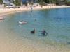 Camp Cove Beach In Watsons Bay