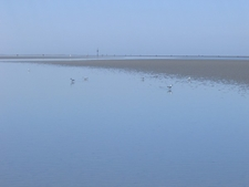 Wadden Sea Near Duhnen