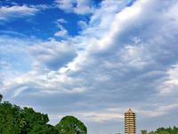Universidade de Pequim