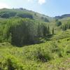 Weminuche Wilderness Hills