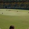 Westpac Stadium Cricket Luving Crowd