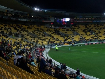Westpac Stadium Crowd
