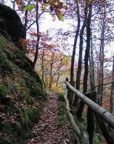 Section Of The Wilderness Trail Near Laykaul