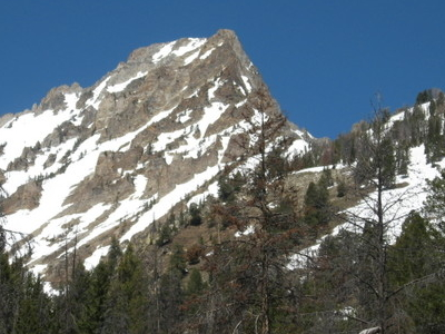 Williams Peak From Alpine Way Trail