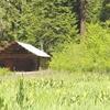 Willow Prairie Meadow