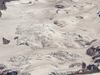 Wilson  Glacier