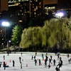 Wollman Rink At Night