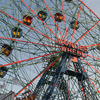 Deno\'s Wonder Wheel Amusement Park