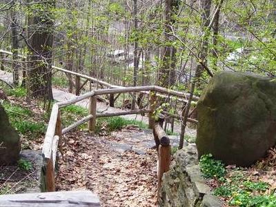 Woodland Path Wave Hill