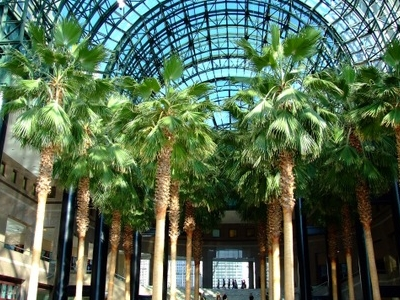 Winter Garden Atrium, New York, United States Tourist Information