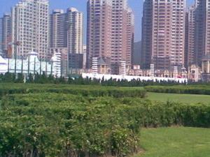 Plaza Xinghai