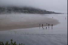 Yachats Estuary In July
