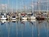 Yachts @ Bayswater Marina - Auckland NZ
