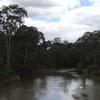 Main Yarra Trail