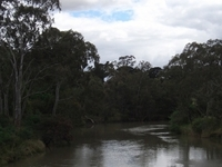 Principal Trail Yarra