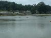 Yercaud Lake  1