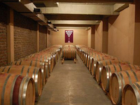 Nashik - Tour the Luxurious Wine Route