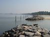 York River