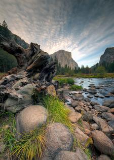 Yosemite National Park In Evening