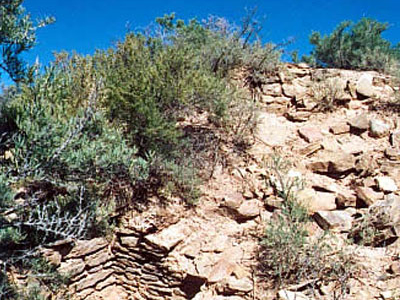 Unexcavated Mound At Yucca House National Monument