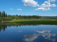 Los ríos Yukon Charley Reserva Nacional