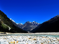 Yumthang Valley Holiday Package
