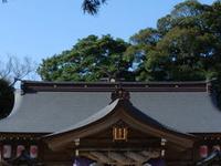 Yaegaki Santuario