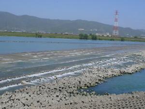 Yoshino Río