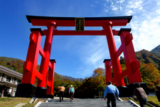 The Torii Gate Front