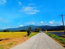 Zamboanga Countryside