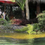 Zen Namkhan Resort