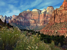 Zion NP – Towers Of The Virgin River