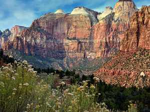 Utah's Five National Parks in 5 Days Photos