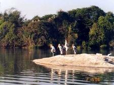 Zoo Bhagalpur