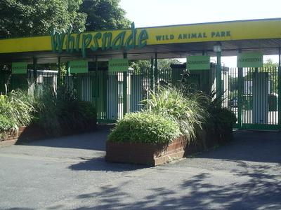 Z S L  Whipsnade  Gate