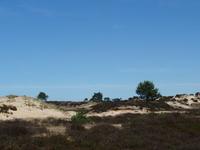 Drents-Friese Wold Parque Nacional