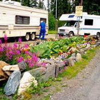 Tolsona Wilderness Rv Park & Campground